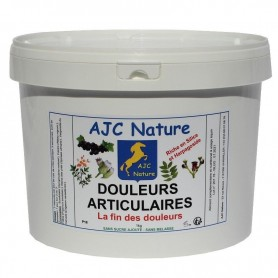 P18 EQUIPAM DOULEURS ARTICULAIRES