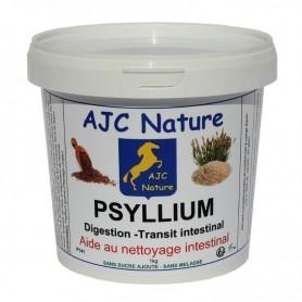 P141 - EQUIPAM PSYLLIUM
