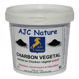P148 - CHARBON VEGETAL