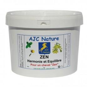 P31 - EQUIPAM ZEN (et Anti-ulcéreux)